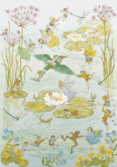 Molly Brett, Fairies and Waterlillies PCE 062