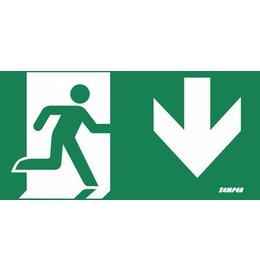 Zemper Diana Flat pictogram nooduitgang beneden