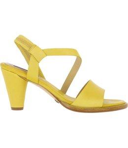Neosens S995 Montua  ceylon yellow
