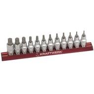 Kraftwerk 12-teiliger Torx-Steckschlüsseleinsätze-Satz auf magnetischer Stecknuss-Schiene