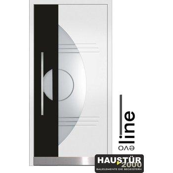 Aluminium Haustür HT 5316.1 BFD