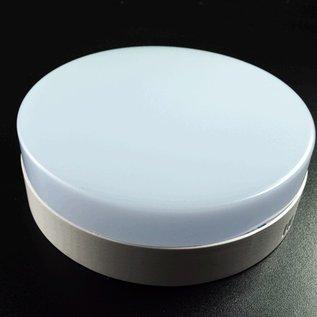 Plafonniere rond type 2 24 W 22 cm rond daglicht wit