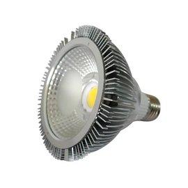 PAR 30 LED Professionele Spot