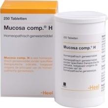 Heel Mucosa compositum H 50tab