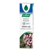 A. Vogel Cinuforce junior mentholspray Inhoud:10 ml