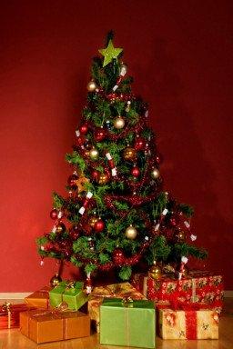 Lumbr is hét juiste adres voor originele kerstcadeaus