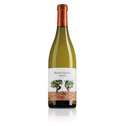 2017 Michel Gassier Vin de France Viognier