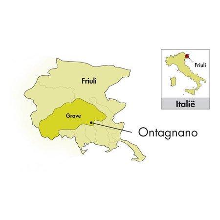 Di lenardo 2018 Di Lenardo Vineyards Venezia Giulia Pinot Grigio