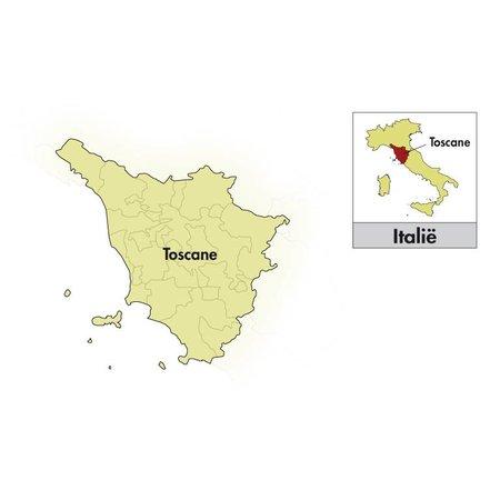 2014 Isole e Olena Toscana Cepparello