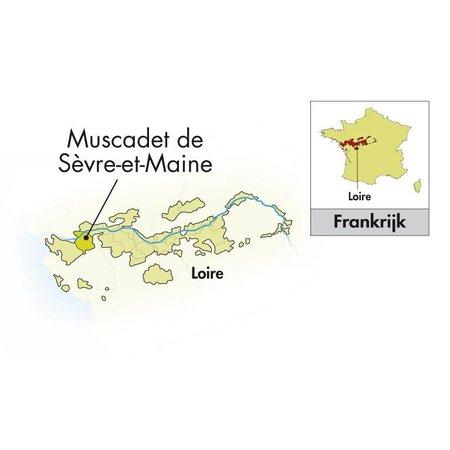 Domaine de la Grange Muscadet Segravevre et Maine sur lie