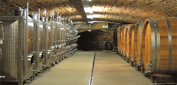 rode wijn pfalz reichsrat von buhl spatburgunder