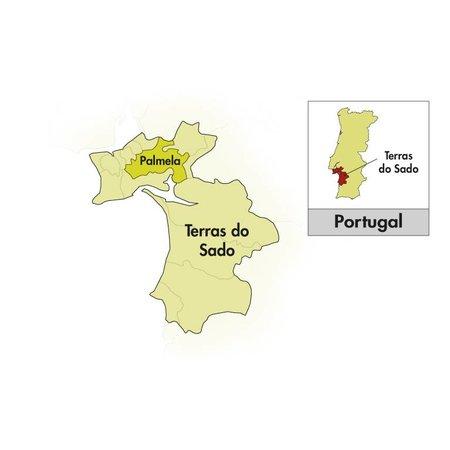 2013 Venâncio da Costa Lima Moscatel de Sétubal Pioneiro Roxo