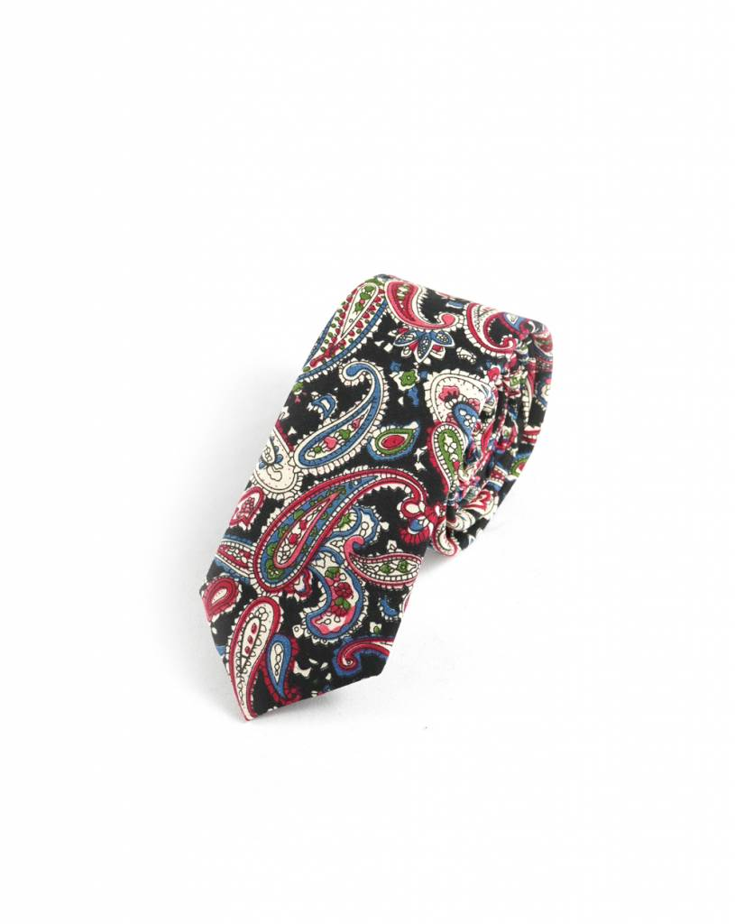 Toffster Cotton tie colorful Paisley