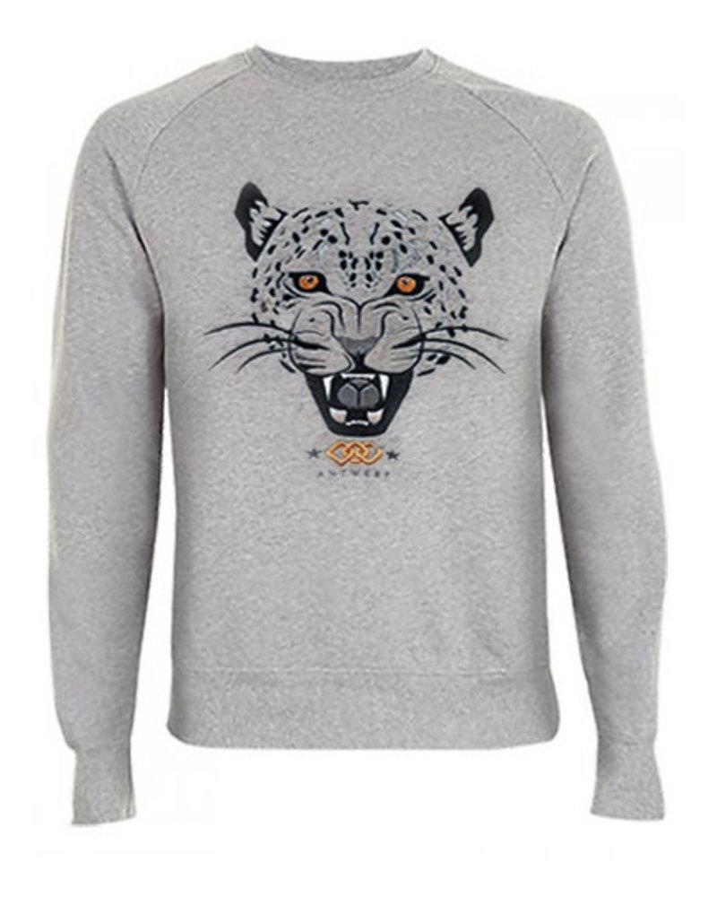 DOPE ON COTTON Sweater Jaguar Antwerp