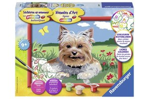 Ravensburger Schilderen op nummer - Kleine Yorkshire Terrier