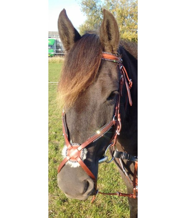 Ascot's Finest Jumping bridle - Cognac brown with rhinestones - Pony