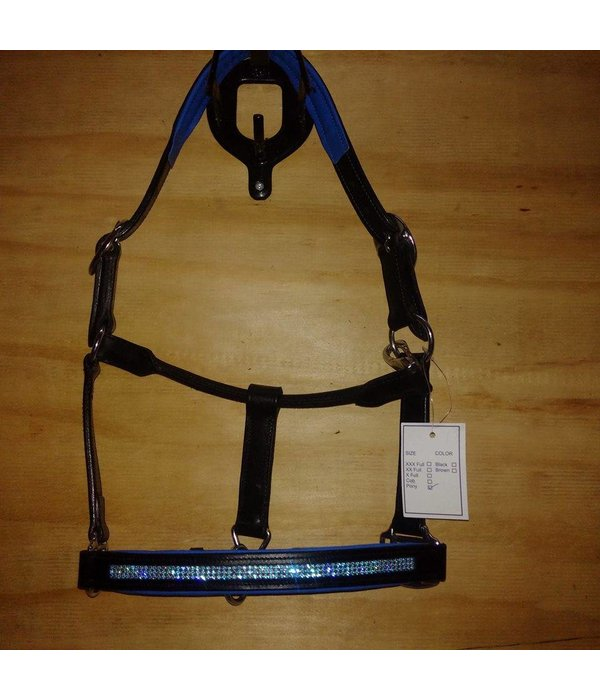 Ascot's Finest Black leather halter with blue padding and blue strass - Pony, Cob and Full