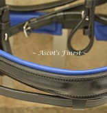 Ascot's Finest Black leather bridle with Blue padding and strass - Pony and Shet