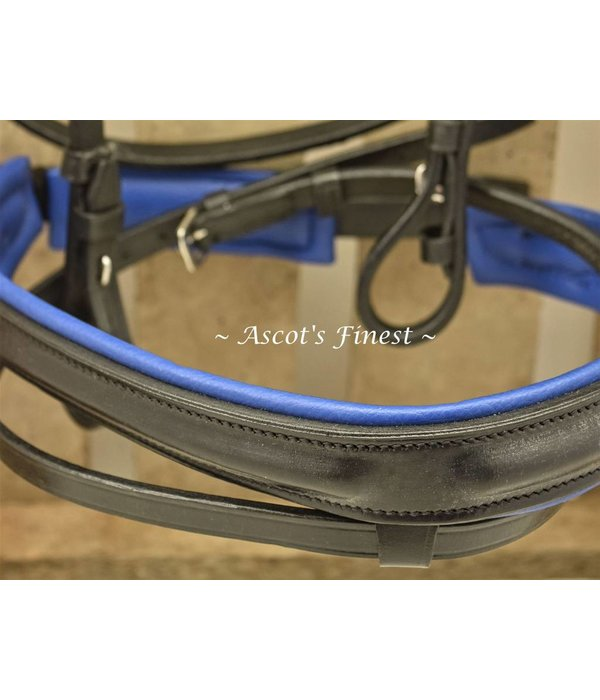 Ascot's Finest Zwart lederen hoofdstel blauw onderlegd  Maat Full, Cob, Pony en Shetlander