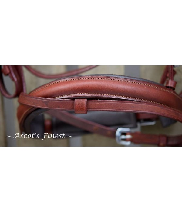 Ascot's Finest Brown cowhide leather bridle with V-browband - Ful and Pony