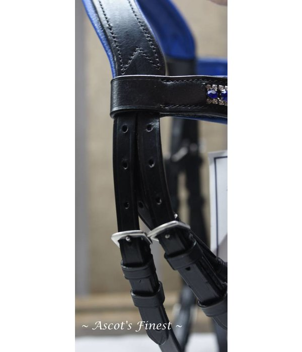 Ascot's Finest Black ultra soft bridle with Royal Blue rhinestones - Pony and Full