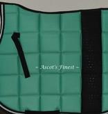 Ascot's Finest Donker turquoise - Cob dressuur