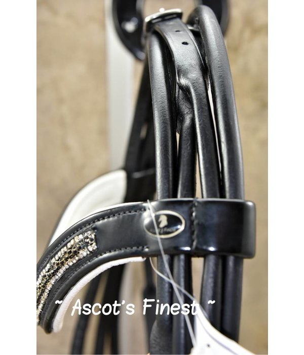 Ascot's Finest Rondgenaaid stang en trens hoofdstel – Maat Full en Cob