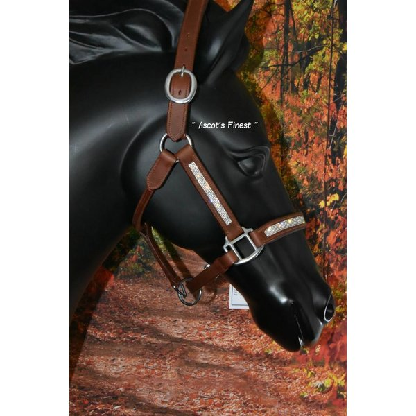 Brown leather halter with fine strass - Pony, Cob and Full