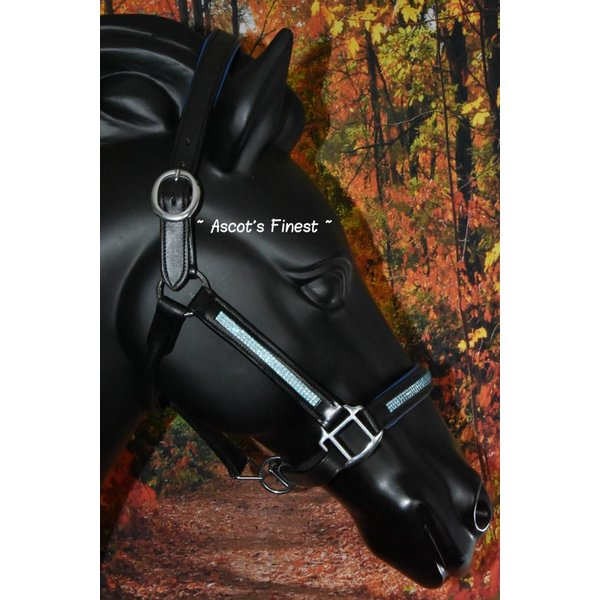 Black leather halter with blue padding and blue strass - Pony, Cob and Full