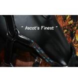 Ascot's Finest Lederen halster met bruin met blauwe koord – Maat Full en Cob