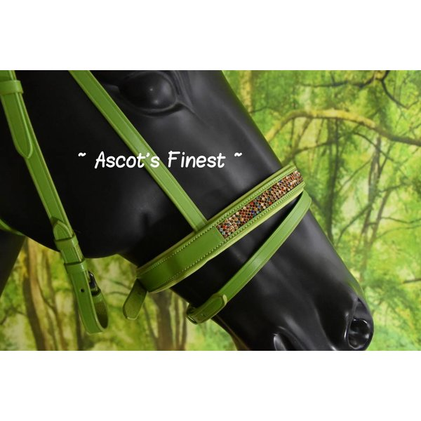 Green bridle - Pony, Cob and Full