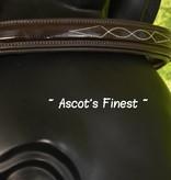 Ascot's Finest Havanna bruin, lak en stiksel - Cob