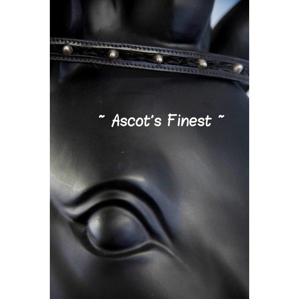 Zwart rundleer met zilveren studs  en haartjes - 38 cm