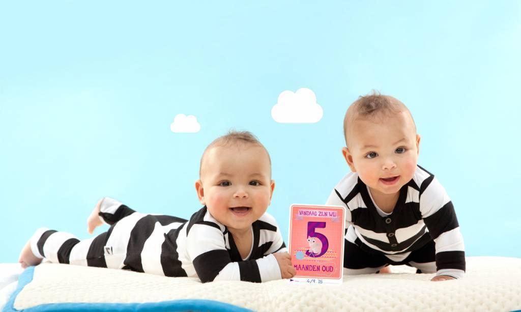milestone twin cards nederlandse versie