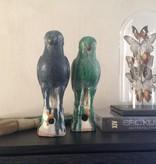 Porceleinen papegaai blauw