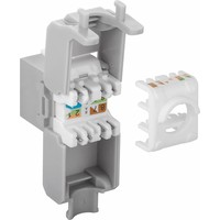 CAT6a Keystone RJ45 unshielded grijs