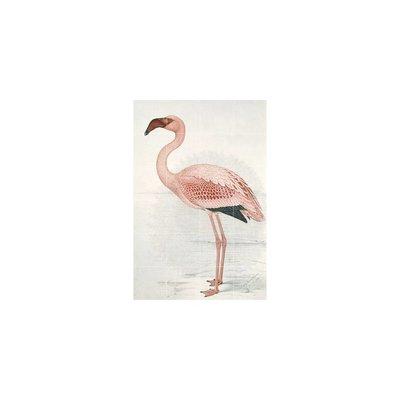 IXXI Wanddecoratie Flamingo Claude Finch Davies - Klein 80 x 120 cm