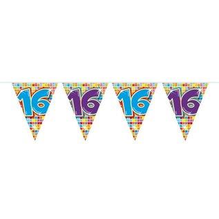 Geblokte 16e Verjaardag Vlaggenlijn 6 meter