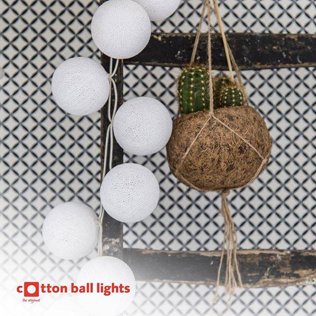 Cotton Ball Lights Cottonball White 20L