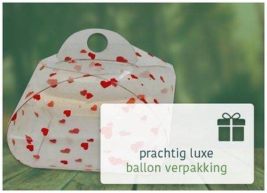 Ballon verpakking