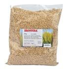 barley malt BREWFERM Pils 3.0-3.5 EBC 1 kg