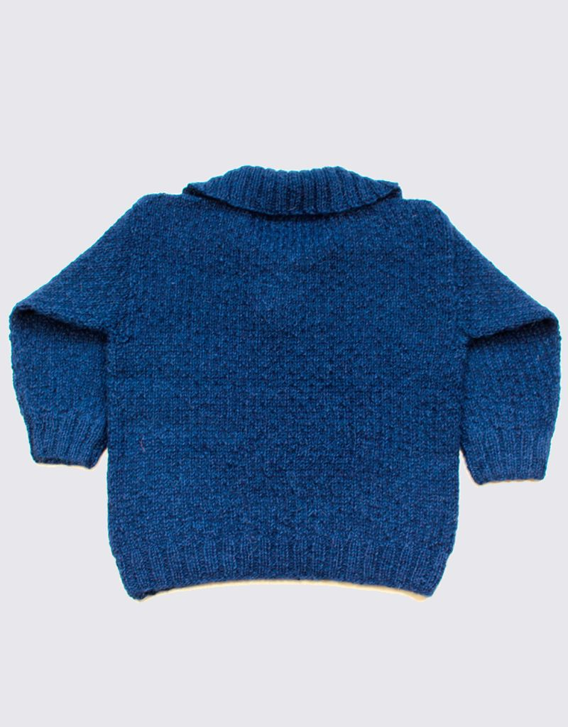 Blue alpaca sweater with collar and wooden buttons.