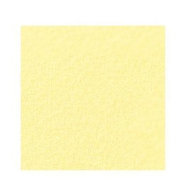 Folia tekenpapier Folia 50x70cm 130gr pak a 25 vel strogeel