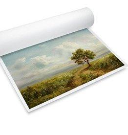 """Optiplot Master Photopaper Satin  24""""X30 meter"""