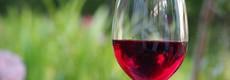 Upgrade je fruitbox met een fles wijn!
