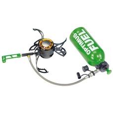 Multi-fuel burners