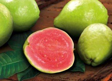 Delicious Guava