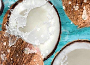 Coconut Splash