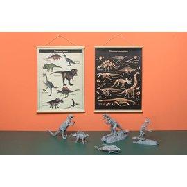 Nieuweschoolplaten Schoolplaat Dino / Dinosaurus skeletten