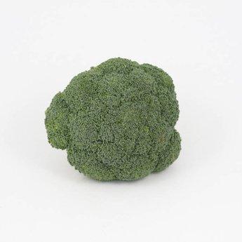 Broccoli planten